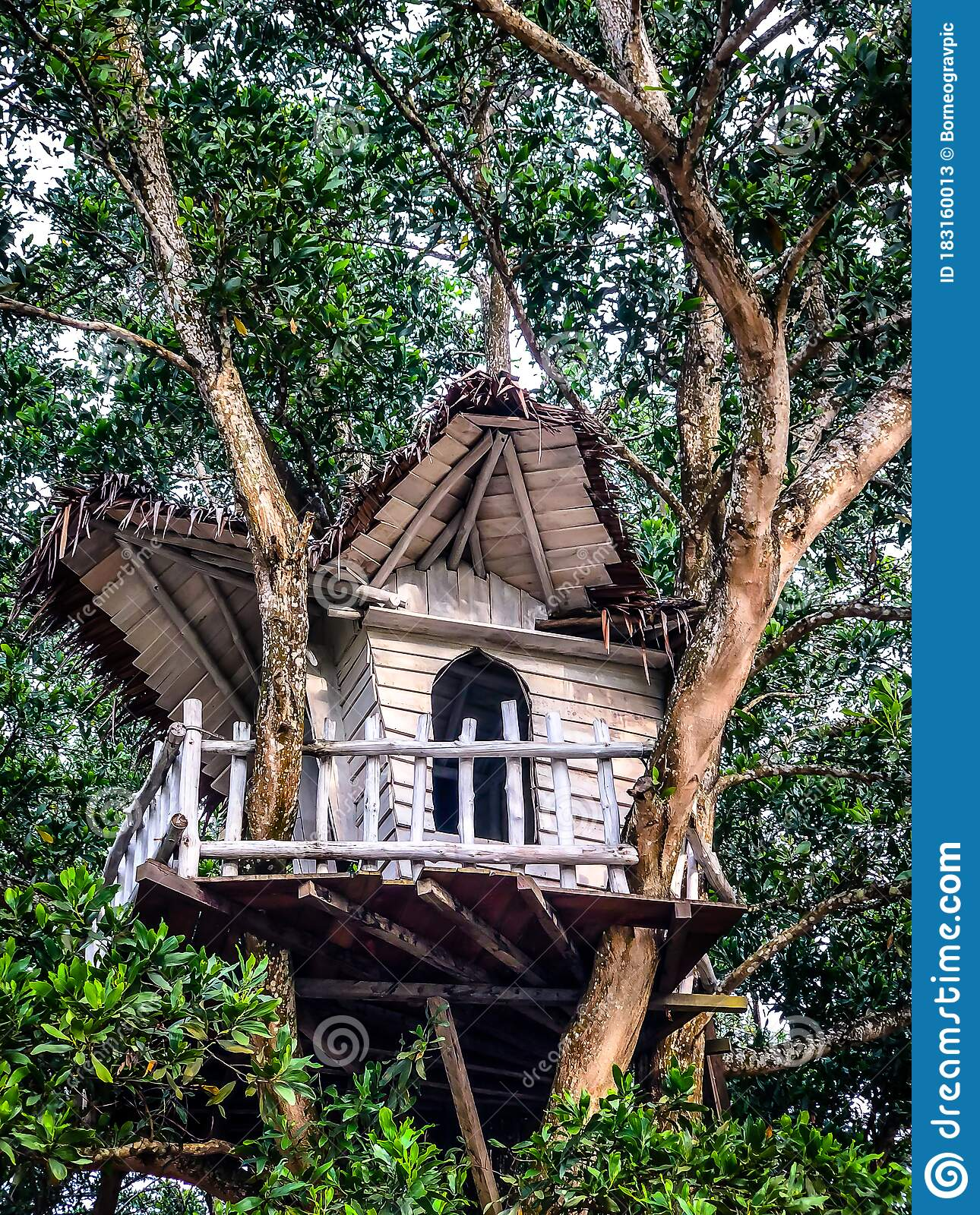 274 Kids Treehouse Photos Free Royalty Free Stock Photos From Dreamstime