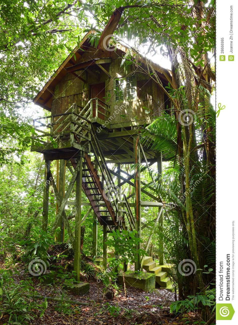 Treehouse Wooden, Eco Tourism Resort Royalty Free Stock ...