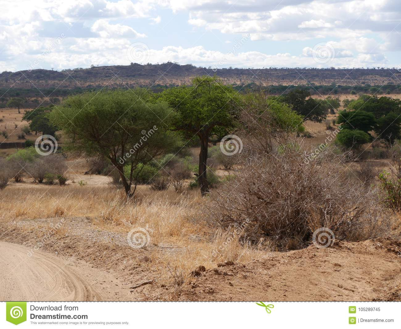 Beautiful landscapes of Africa