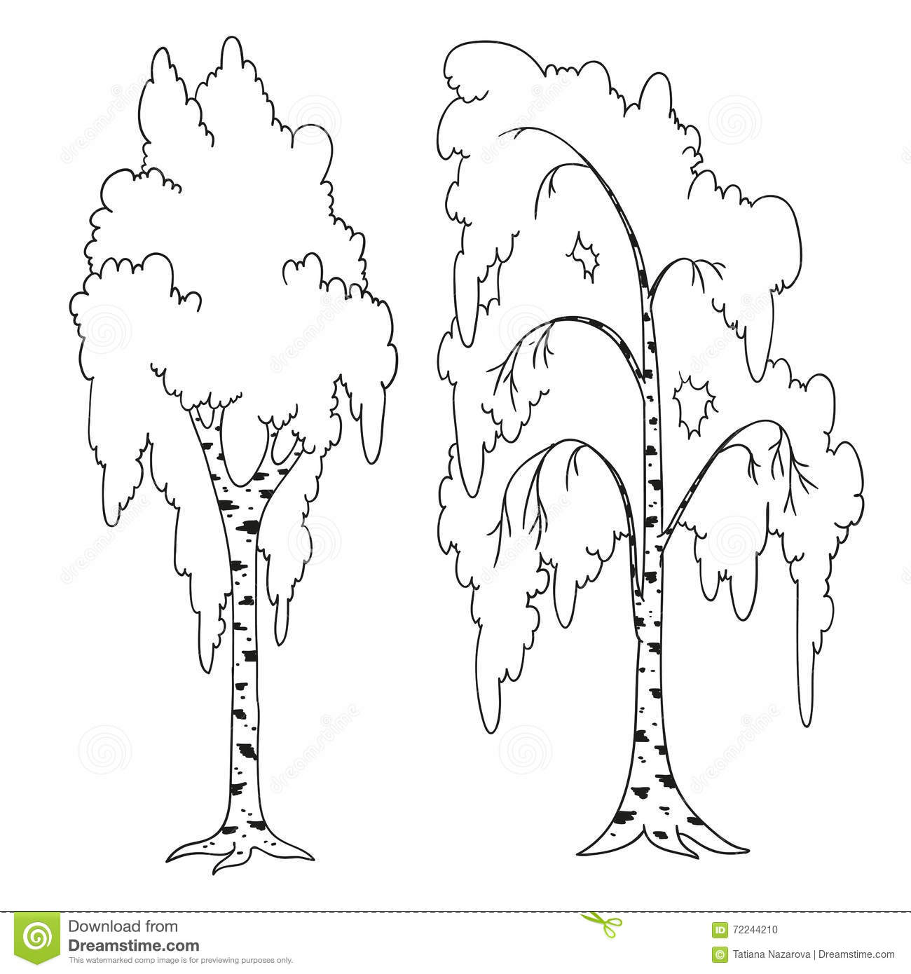 trees coloring book birch outline stock illustration image 72244210