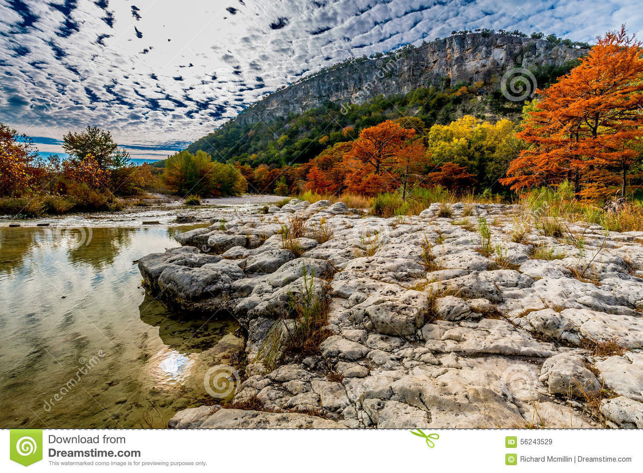 Trees with Fall Foliage on a Rocky Bank of the Frio River with Hill in Background