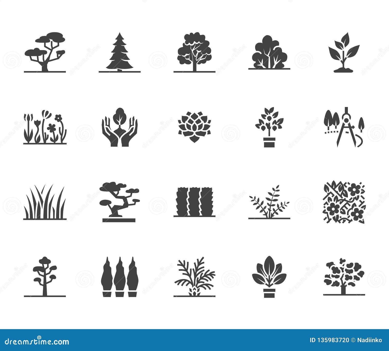 Trees flat glyph icons set. Plants, landscape design, fir tree, succulent, privacy shrub, lawn grass, flowers vector