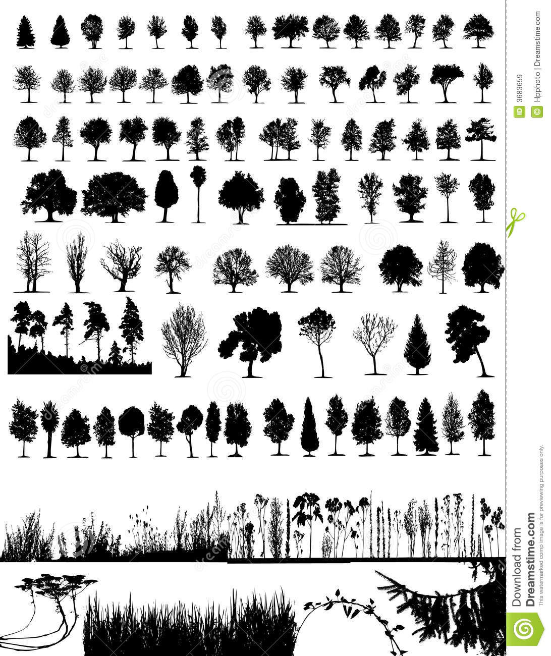 Download Trees, grass, plant vector stock vector. Illustration of land - 3683659