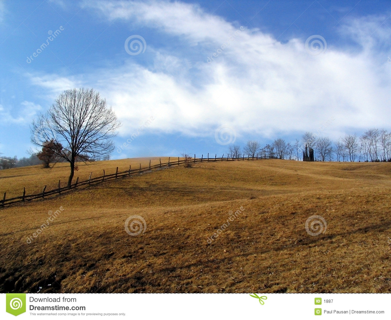 Trees and hills
