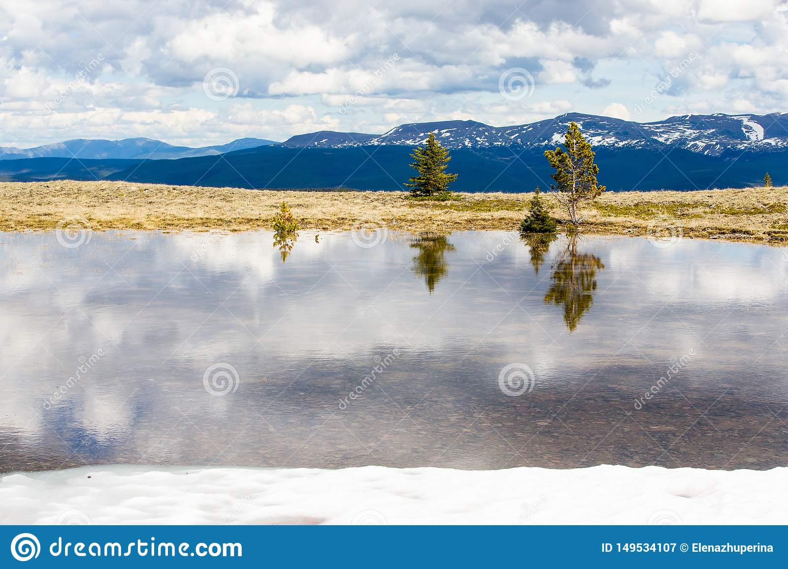Trees are reflected in the melt water, against the snow-capped tops of the high mountains of British Columbia