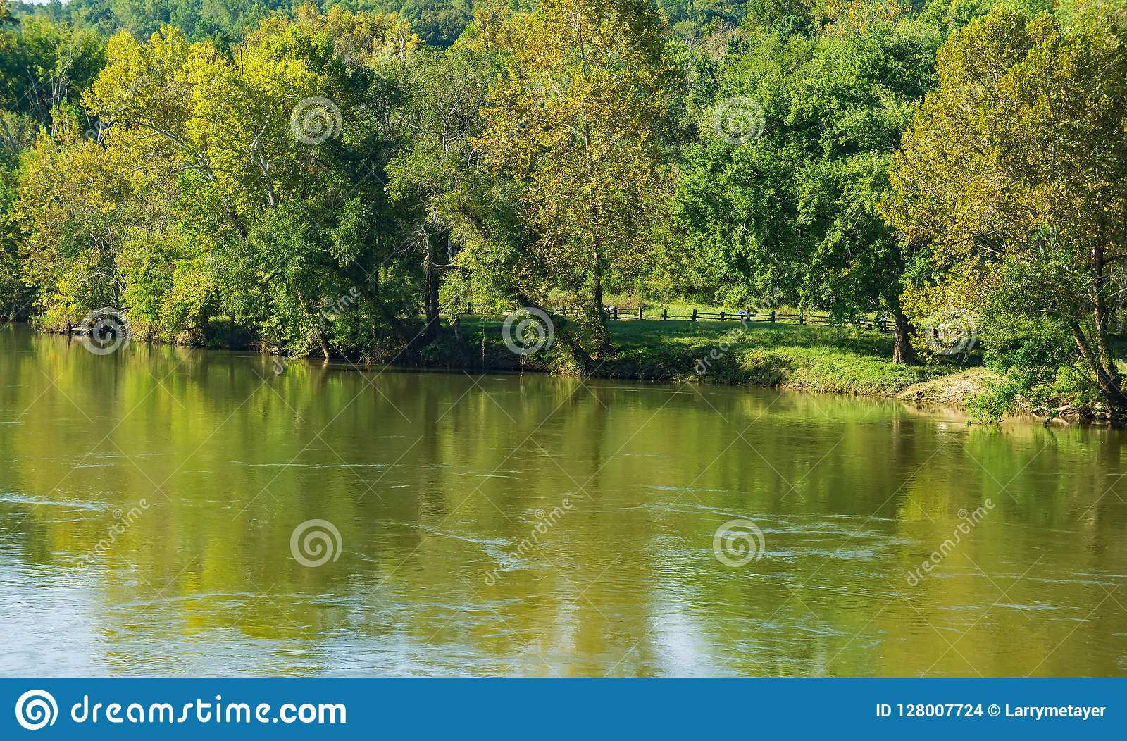 Trees Showing Early Fall Colors on the James River, Virginia, USA