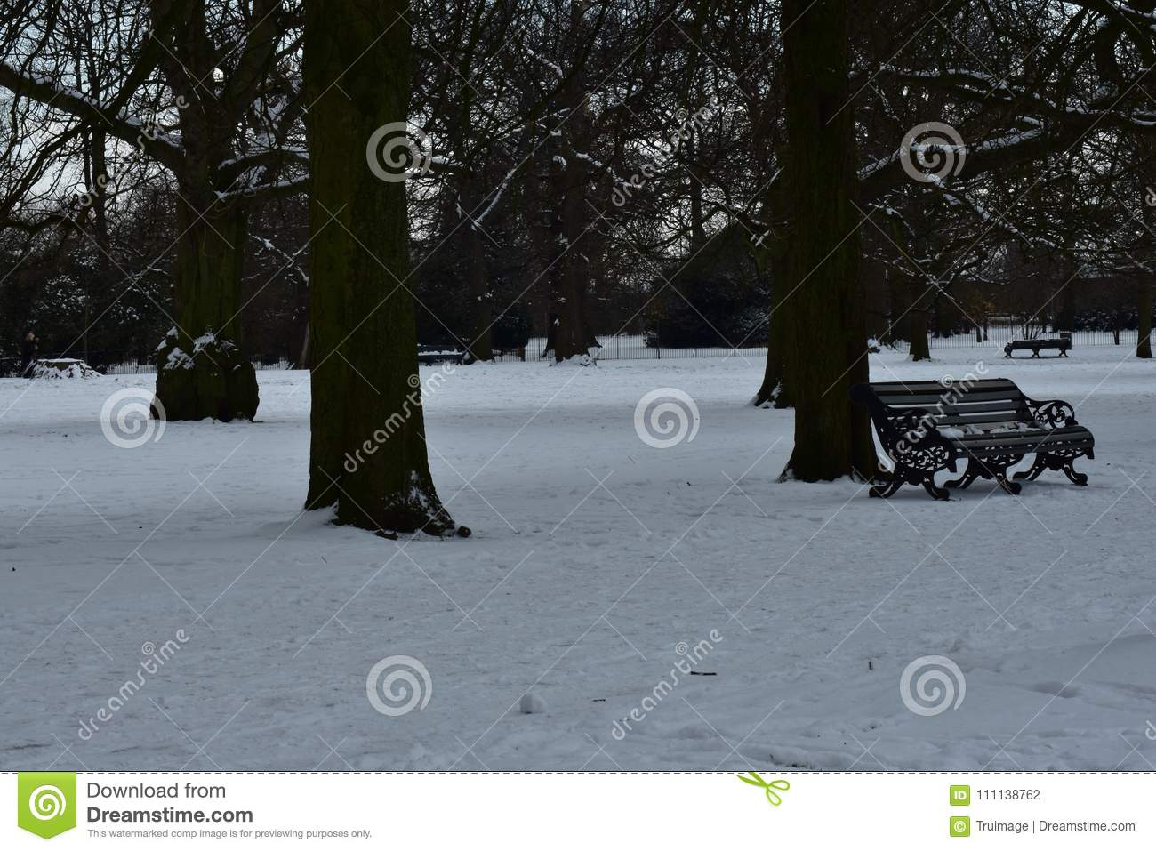 Snow covered field