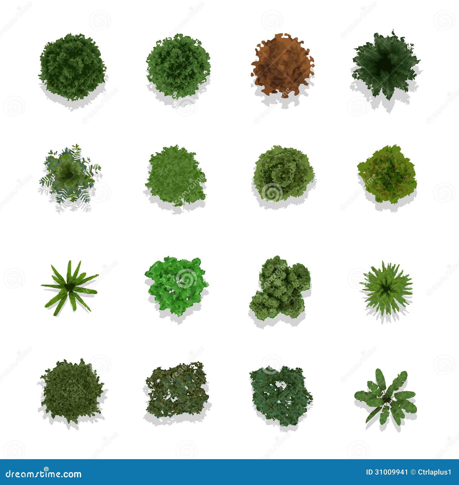 Landscape Illustration Vector Free: Trees Top View For Landscape Stock Image