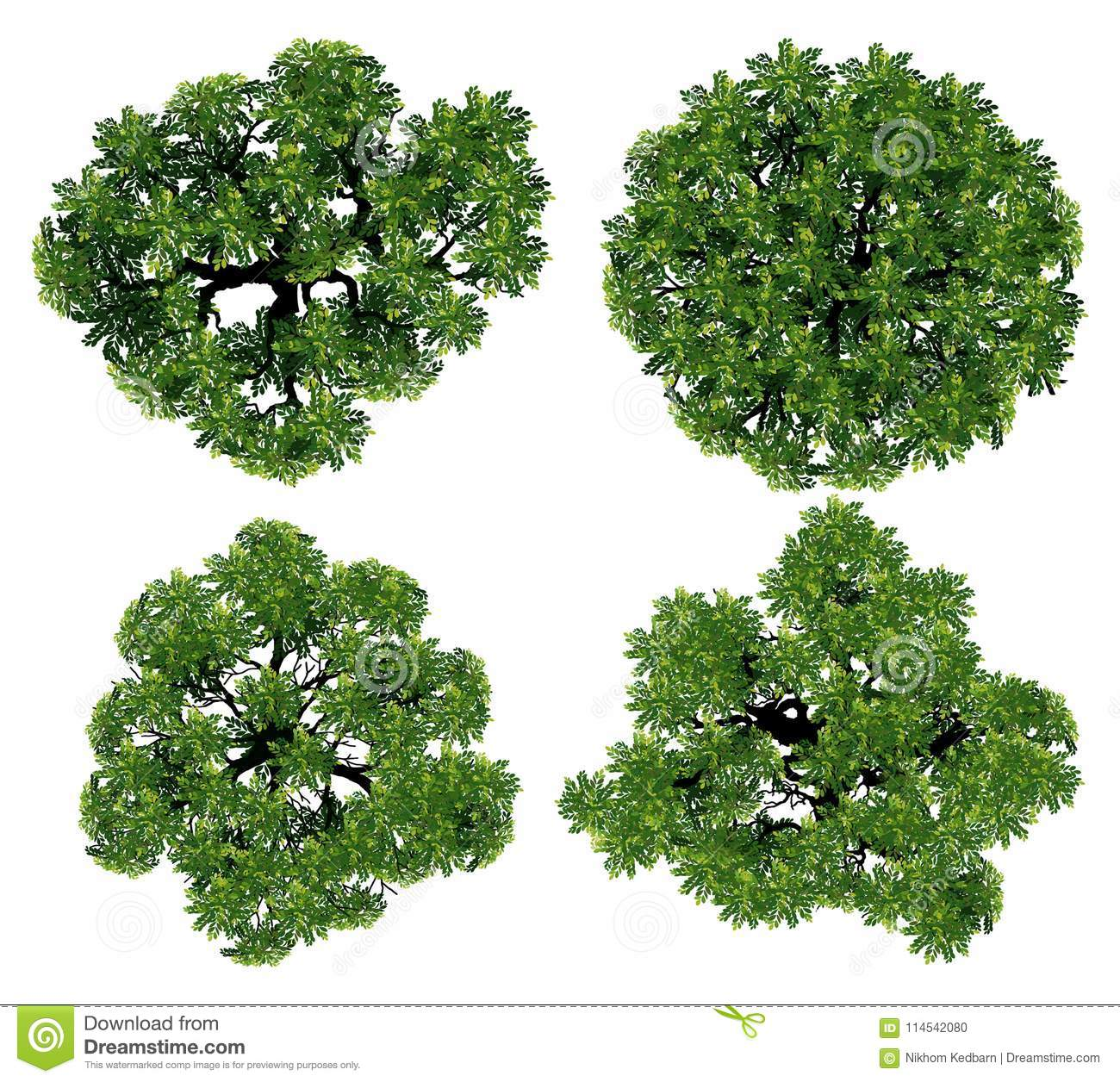 Trees Top View For Landscape Vector Illustration. Stock ...