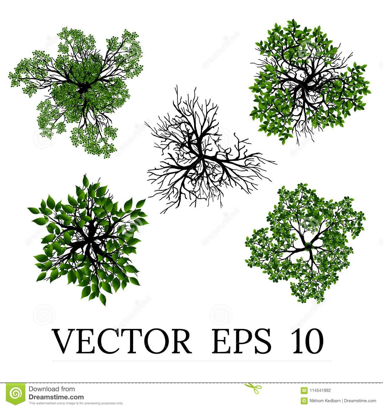 Download Trees Top View For Landscape Vector Illustration Stock