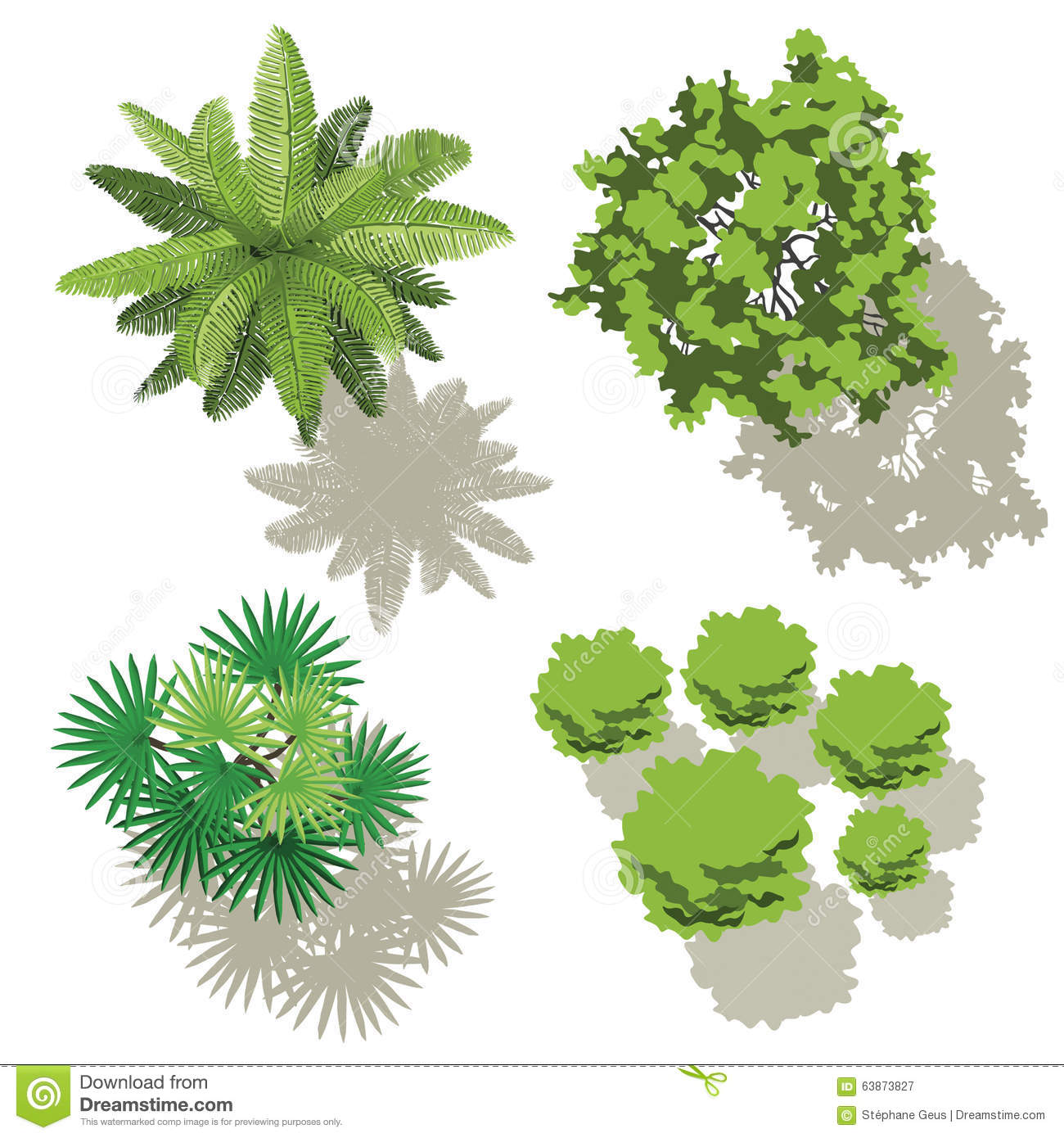 Trees Top View For Map Stock Illustration Image 63873827