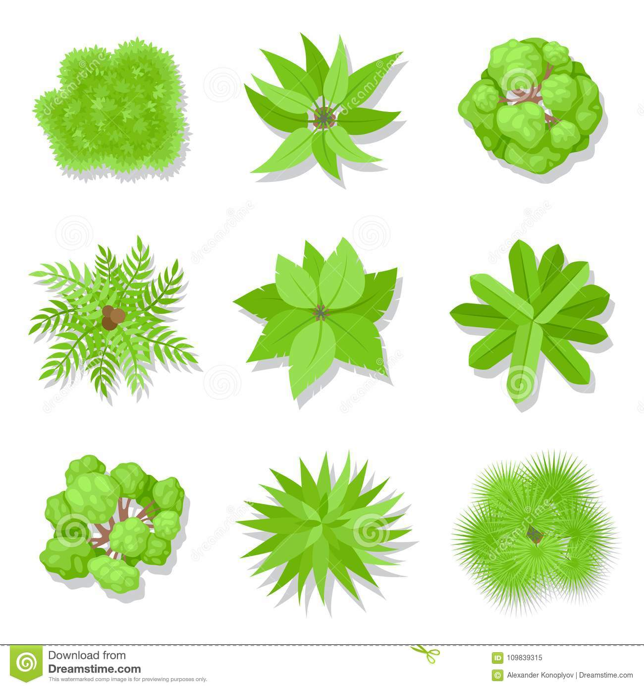 Trees Top View Stock Vector Illustration Of Cartoon 109839315 To view this model in virtual reality: https www dreamstime com trees top view trees top view green woody plants set branches leaves botany ecology concept vector flat style cartoon image109839315