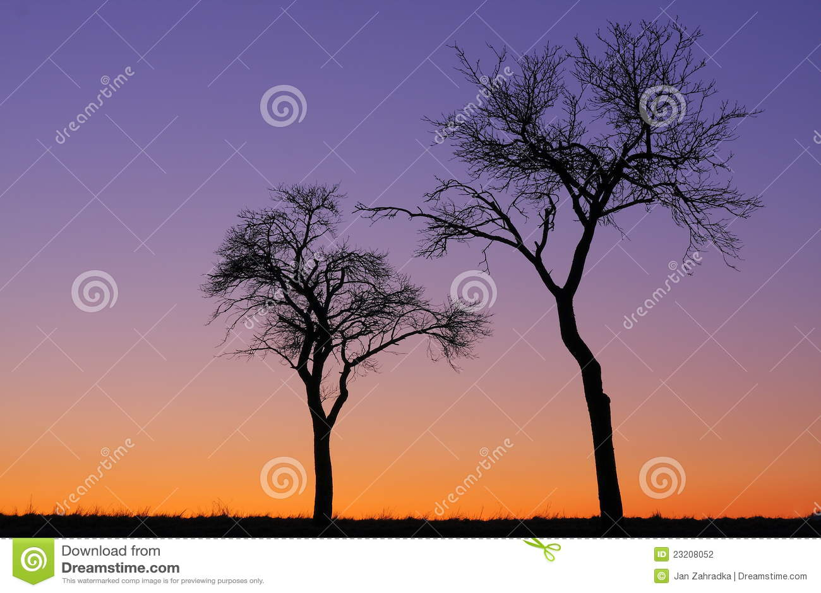 Trees två