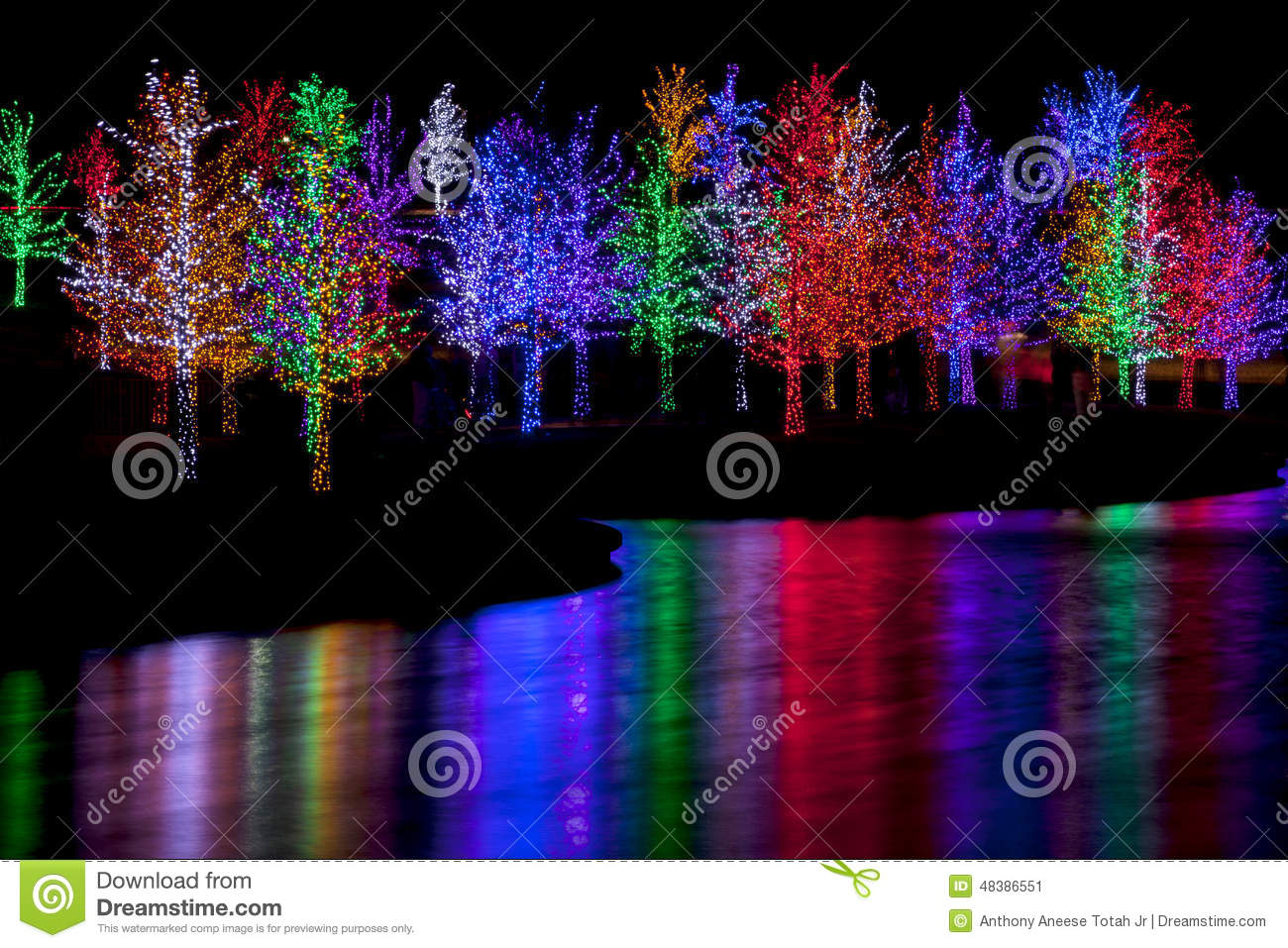 trees tightly wrapped in led lights for the christmas holidays reflecting in lake each tree is wrapped in one color