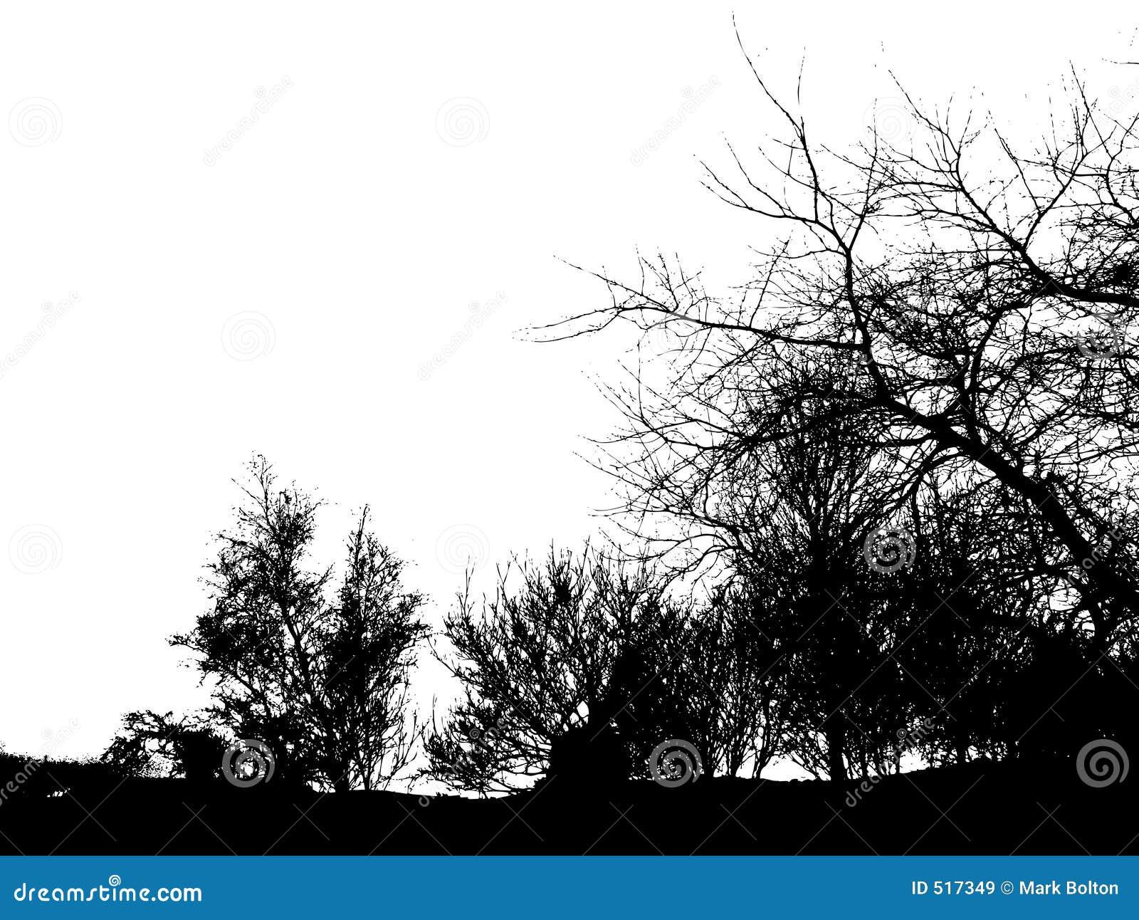 Treesvinter