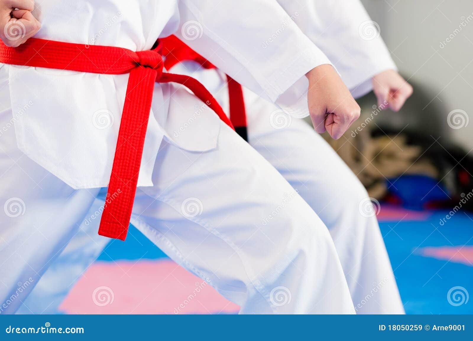 Treinamento do esporte das artes marciais na ginástica