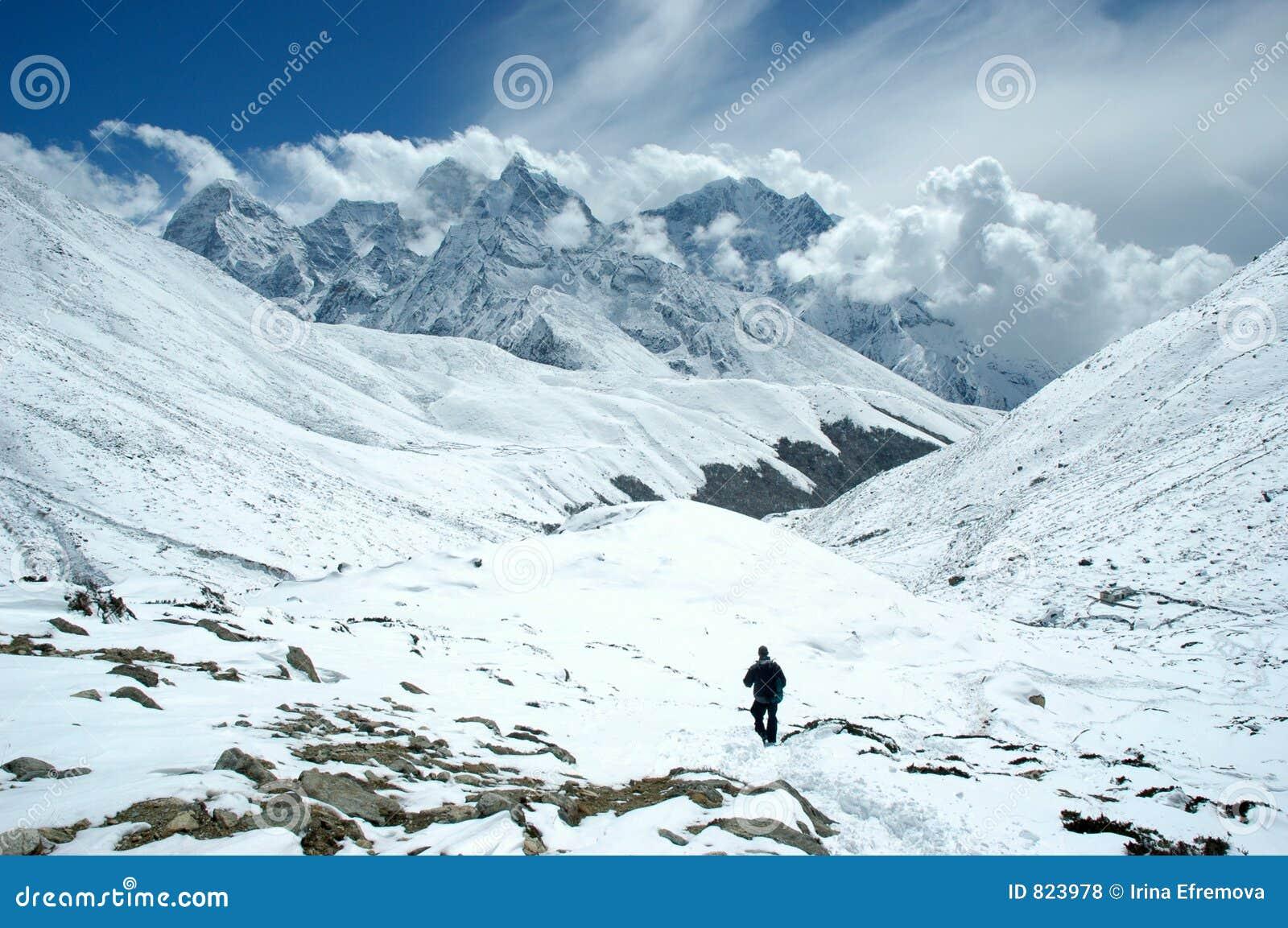 Trekker in het Himalayagebergte