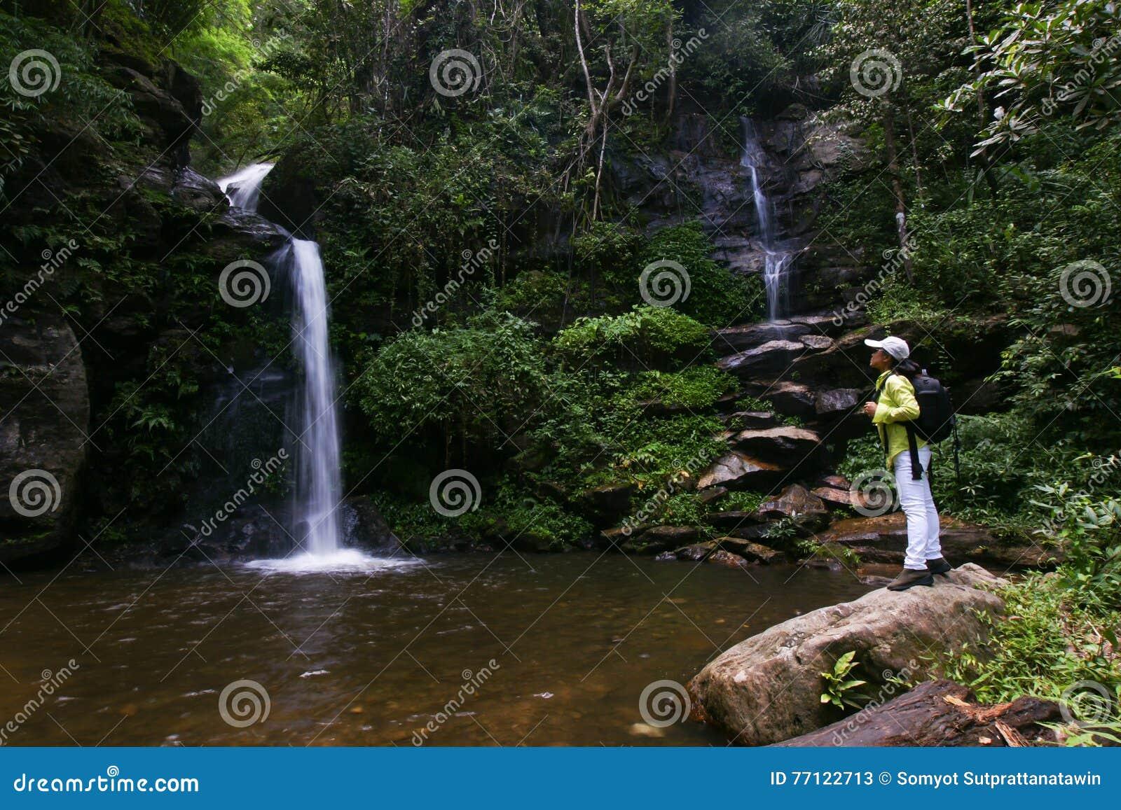 Trekker woman rain forest national park