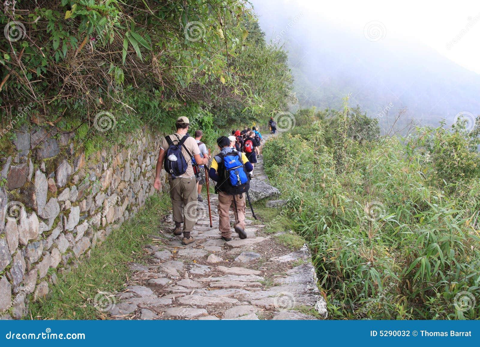 Trekkers en el rastro del inca que va a Machu Picchu