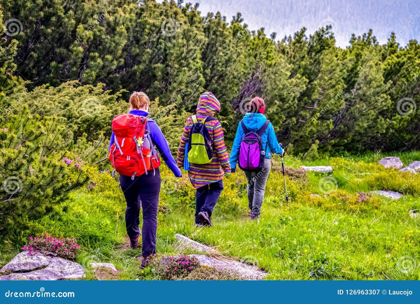 Trekkers walking on mountain path