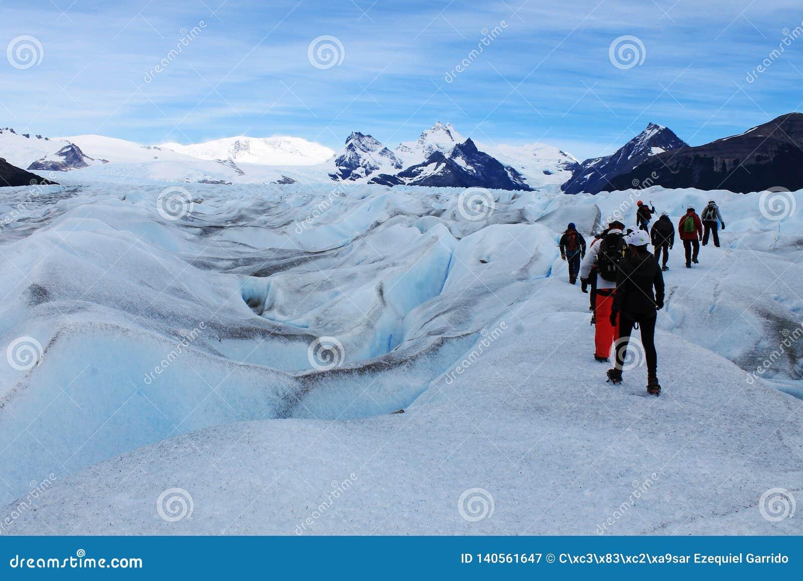 Trekking большого ледника Perito Moreno льда популярный туристский, Calafate Аргентина