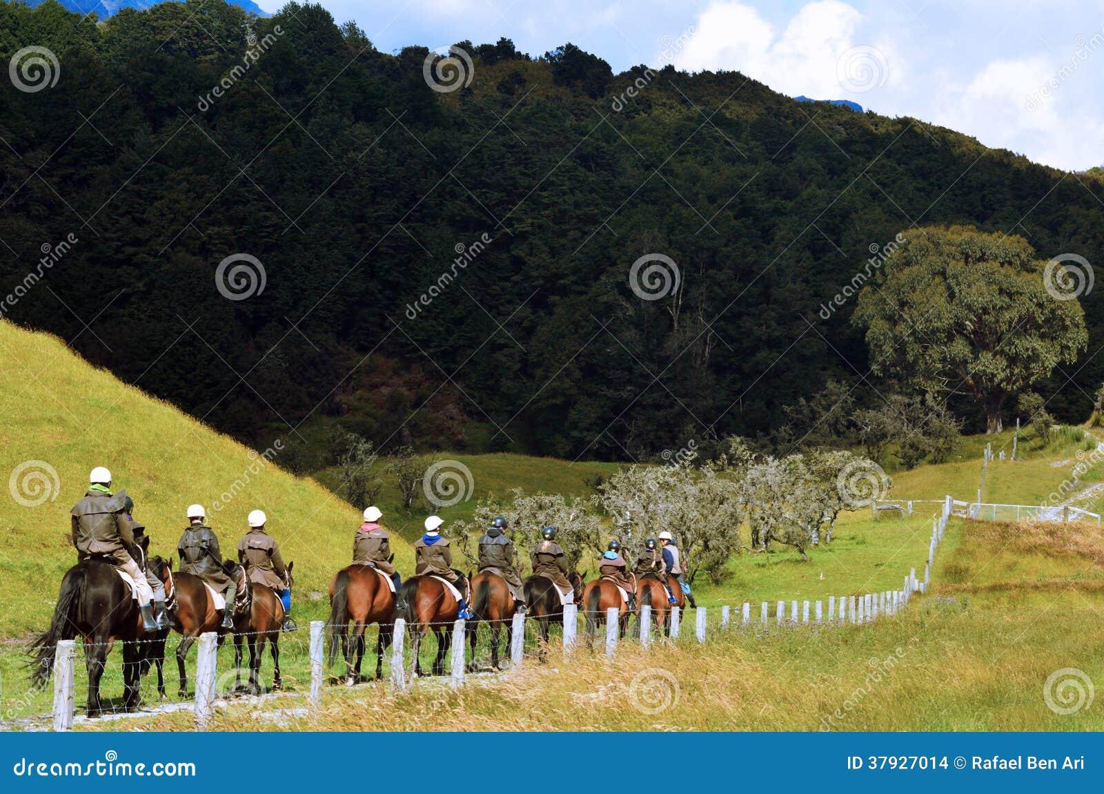 Trekking и верховая езда лошади в Новой Зеландии