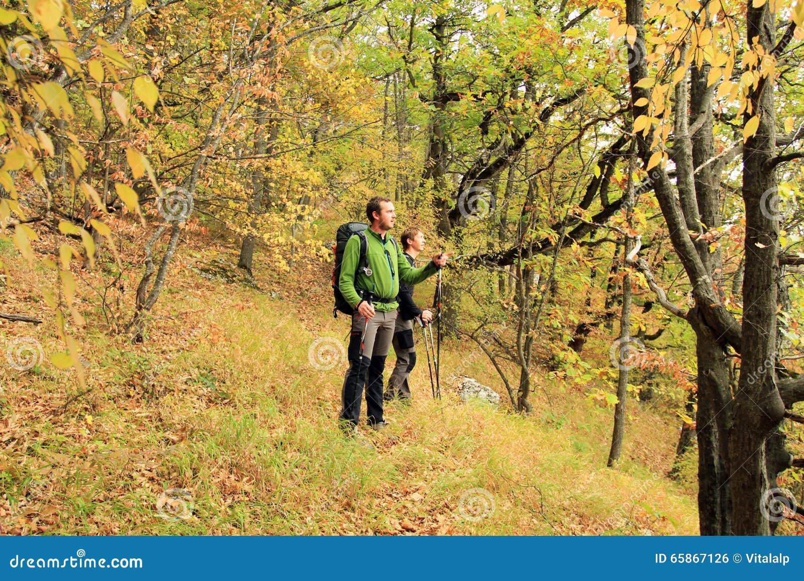 Trekking de randonneur dans les montagnes