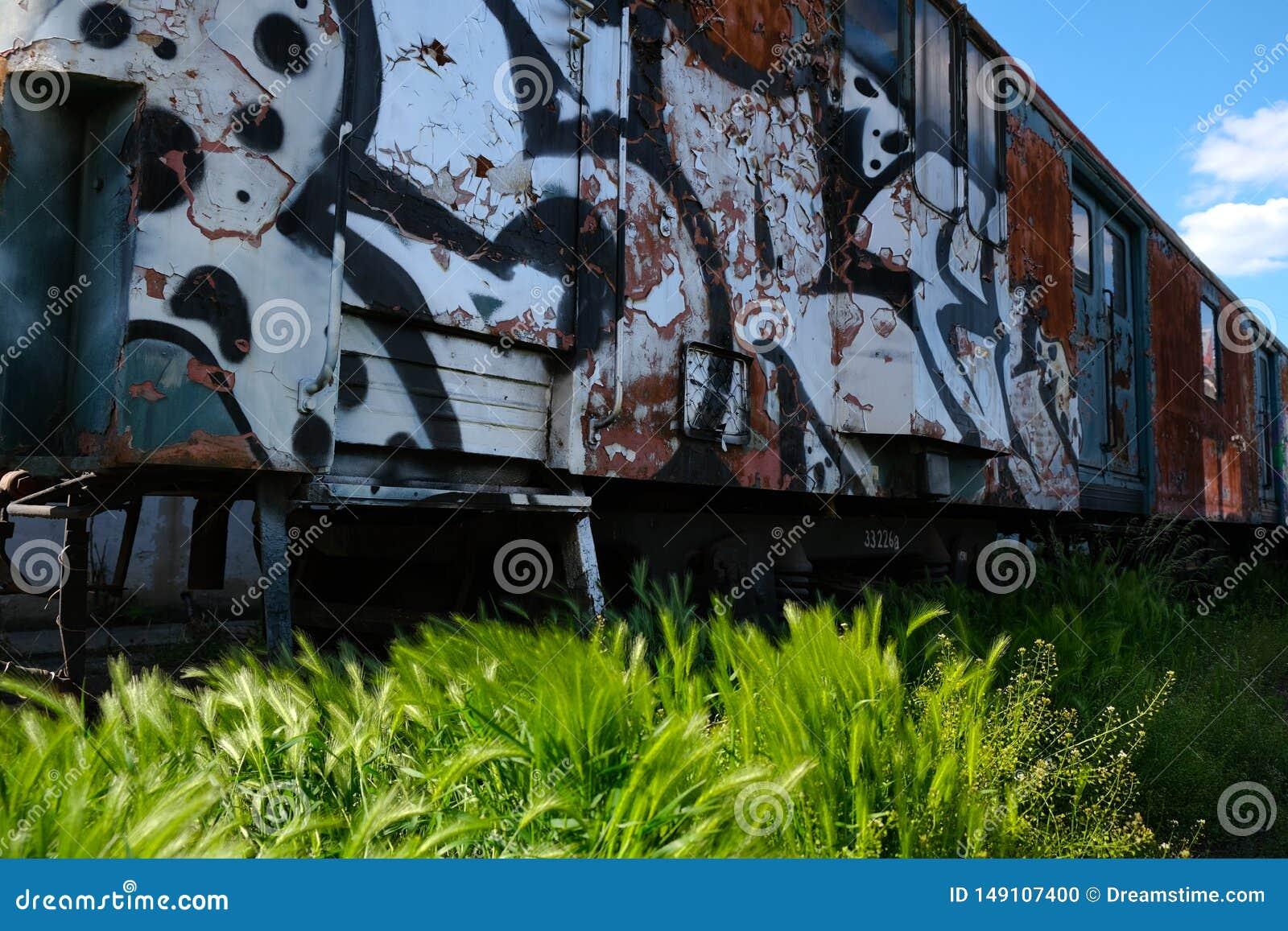 Tren viejo en el dep?sito cubierto en pintada