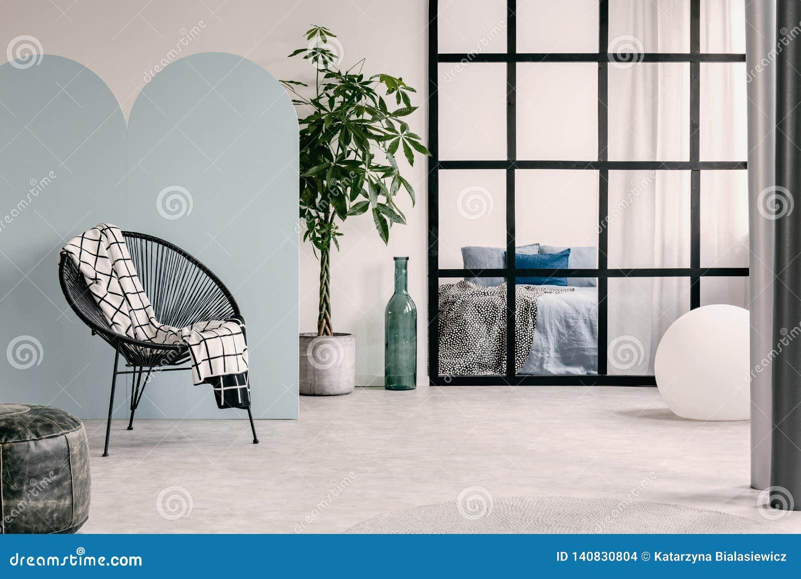 Trendig vardagsruminre med den vita och blåa väggen, den gröna växten i kruka och moderiktig stol