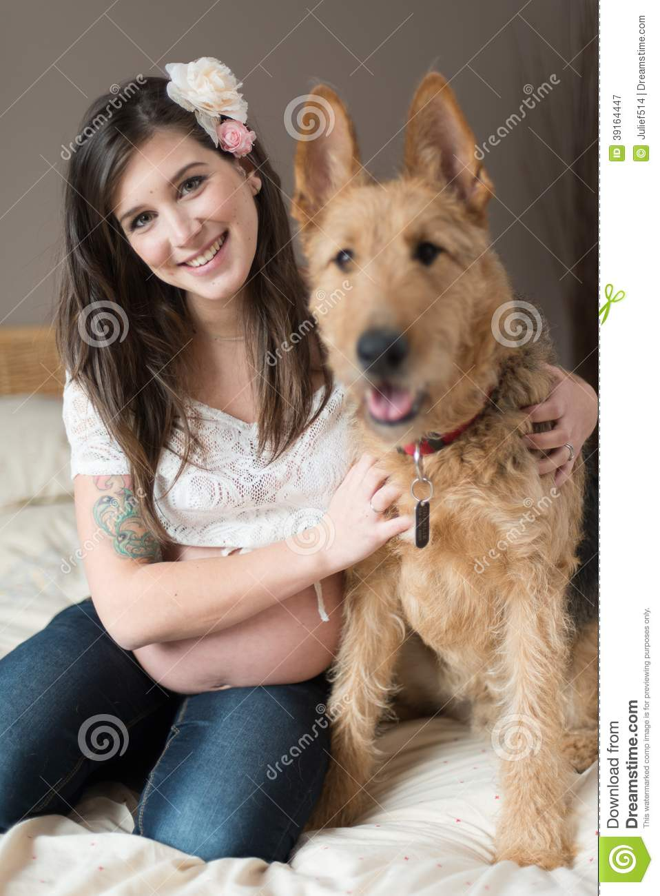 trendy pregnant woman with her pet dog stock photo   image 39164447