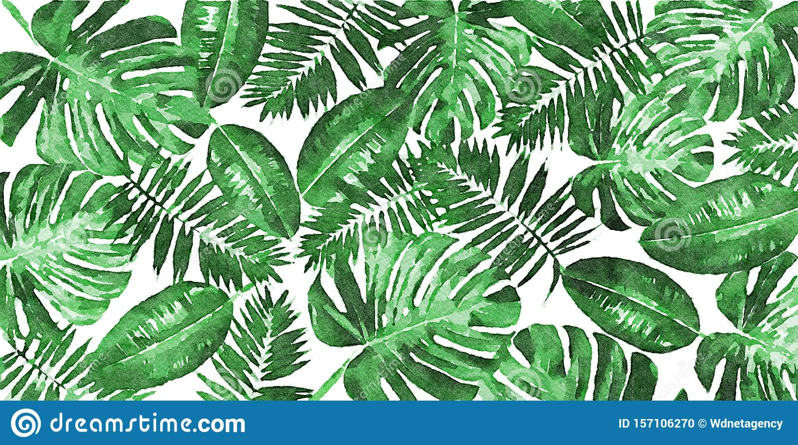 Trendy Tropical Leaves Decoration Stock Illustration Illustration Of Flower Artwork 157106270 Hand painted illustration isolated on white background. https www dreamstime com trendy tropical leaves decoration digital art painting mixed composition trendy tropical green leaves monstera palm ficus image157106270