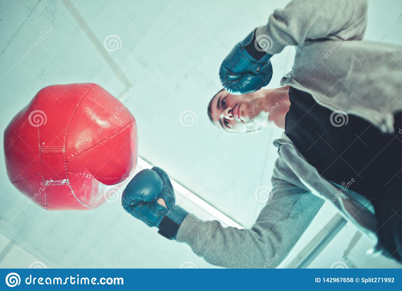 Trenes hermosos del boxeador del hombre