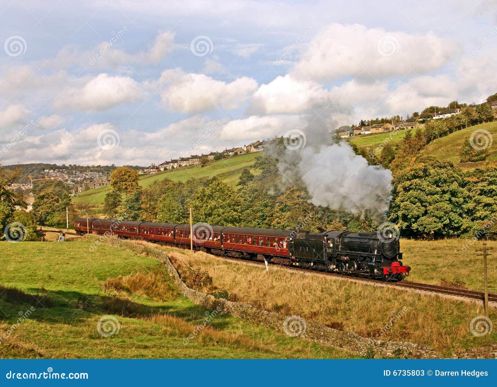 Treno del vapore in campagna