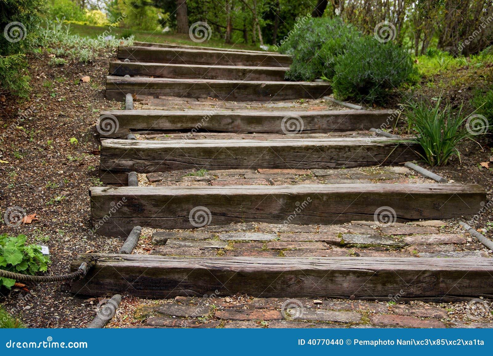 treppe hergestellt vom holz im park stockfoto - bild von hölzern
