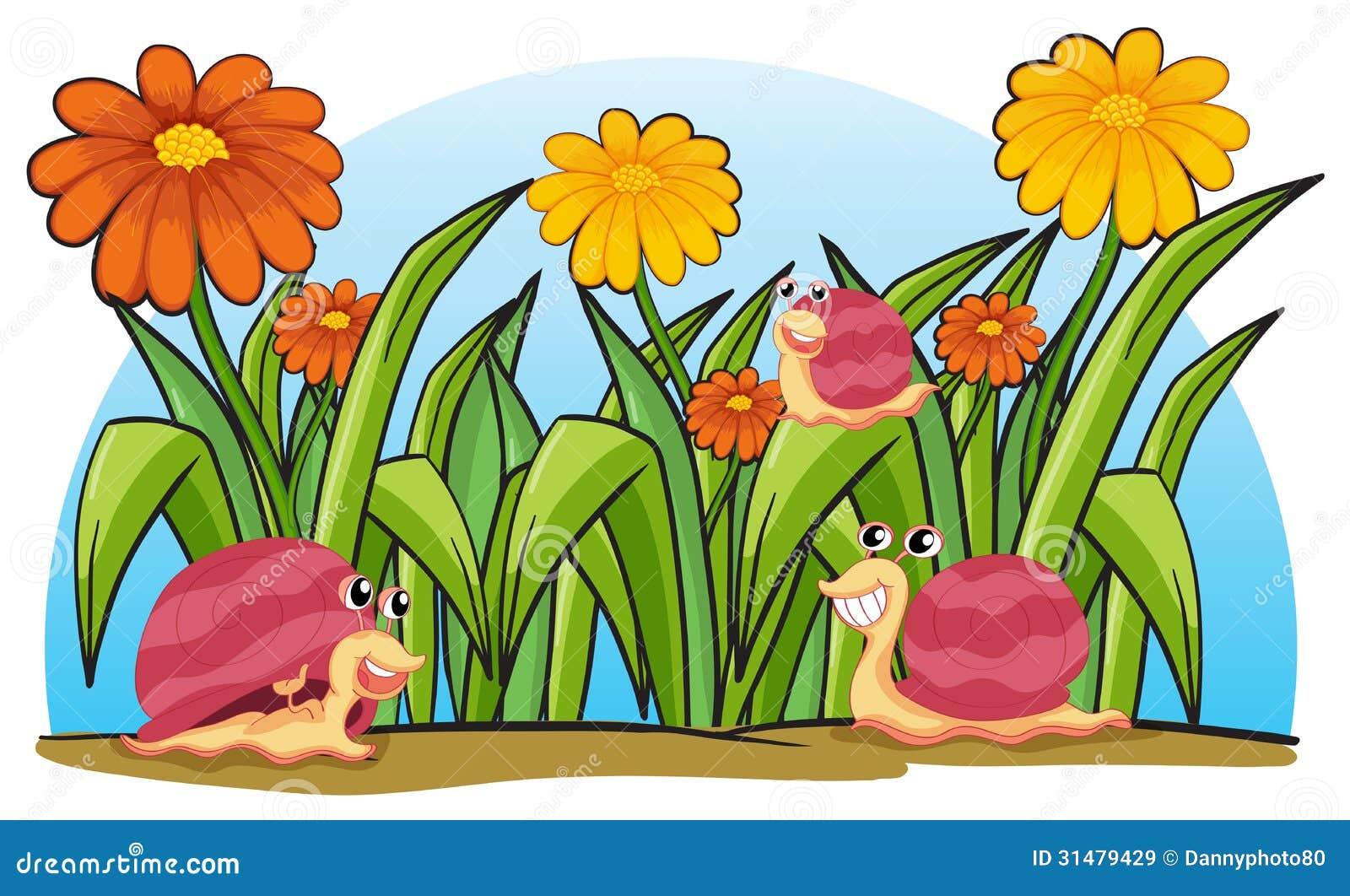 Tres caracoles en el jard n im genes de archivo libres de for Caracoles en el jardin