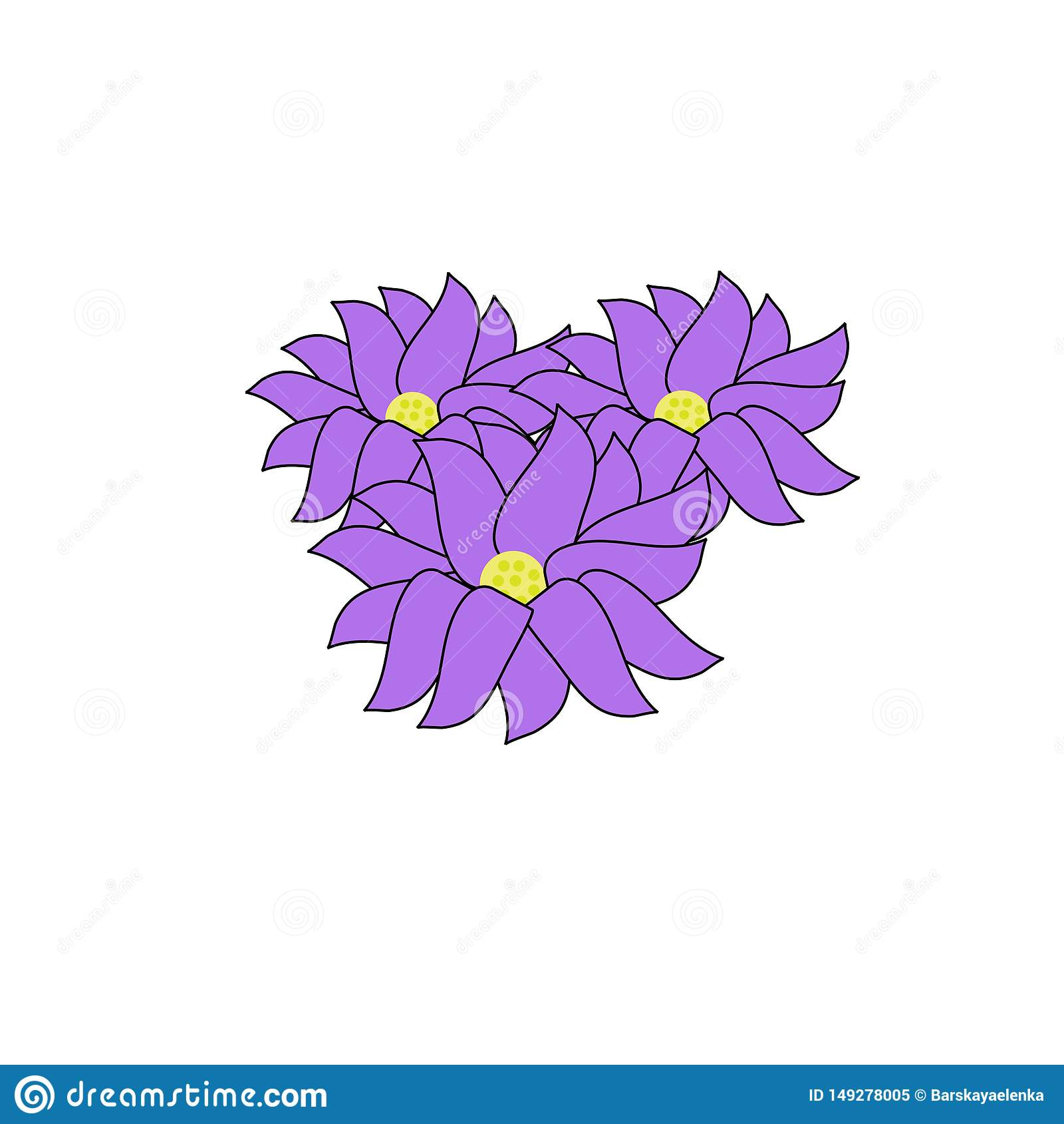 Tres flores p?rpuras grandes de la peon?a