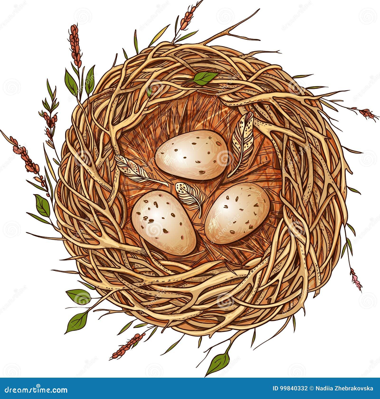 Tres huevos en una jerarquía