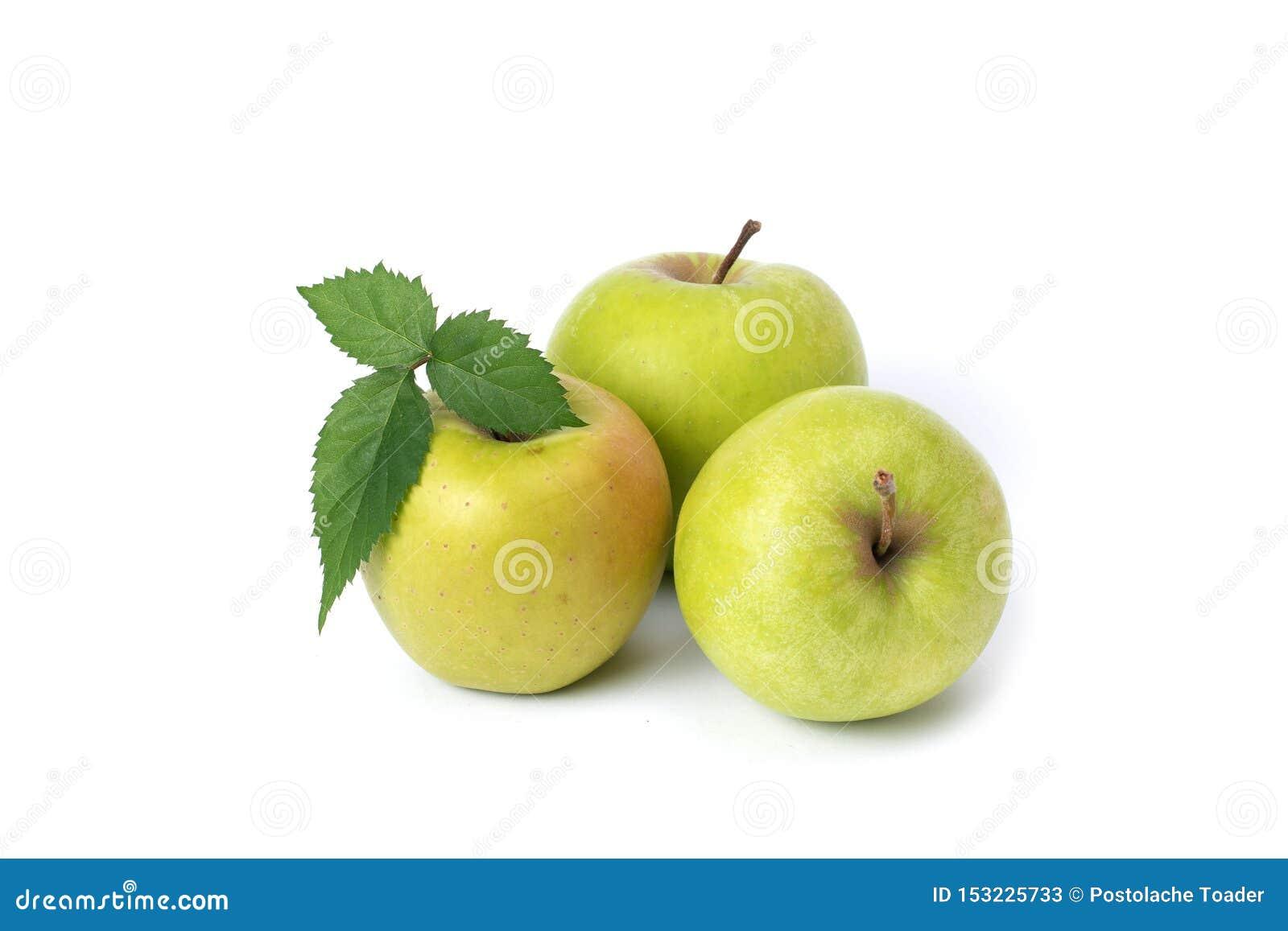 Tres manzanas verdes en un fondo blanco Manzanas verdes maduras en un fondo aislado