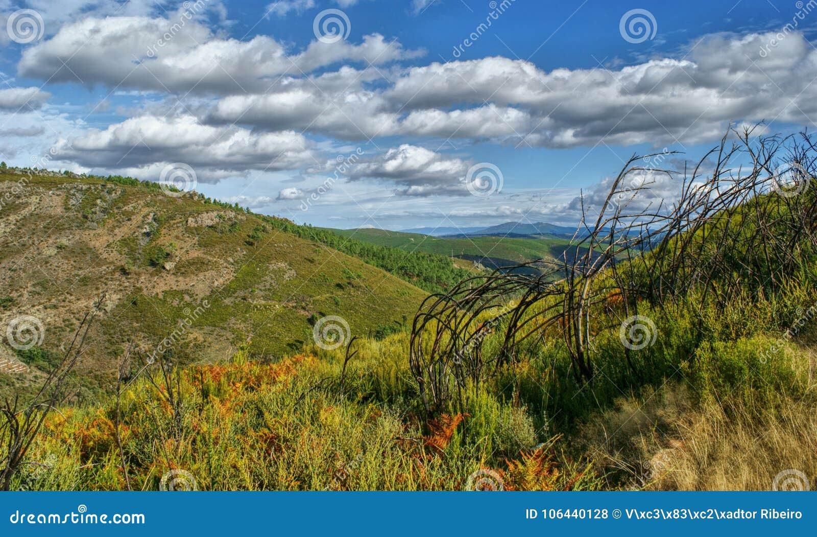 Scenic view of Tresminas