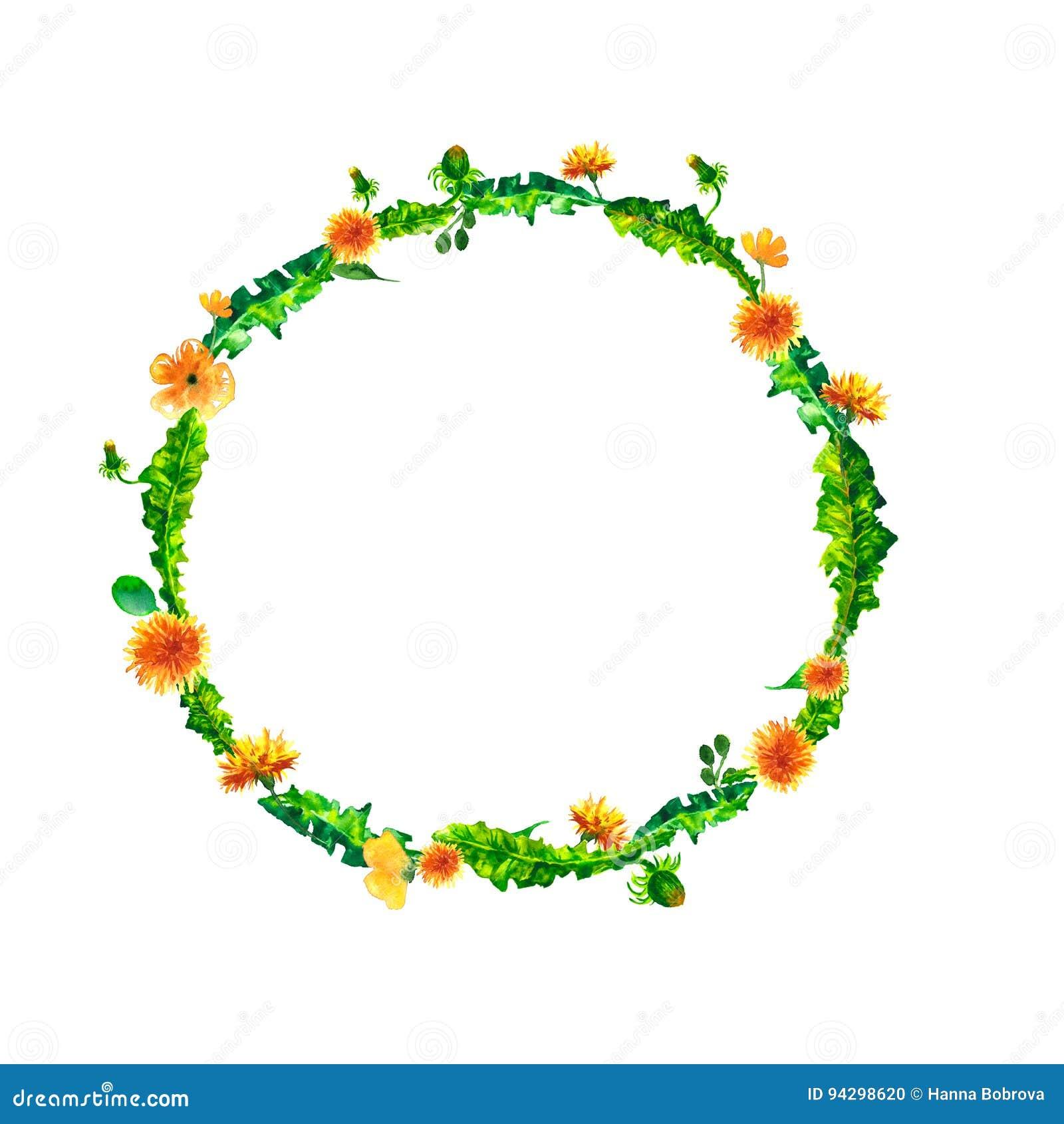 Guirlande Ronde De Ressort Floral Daquarelle Avec Les Pissenlits Jaunes Illustration Florale Peinte La Main Naturelle Fleur Disolement