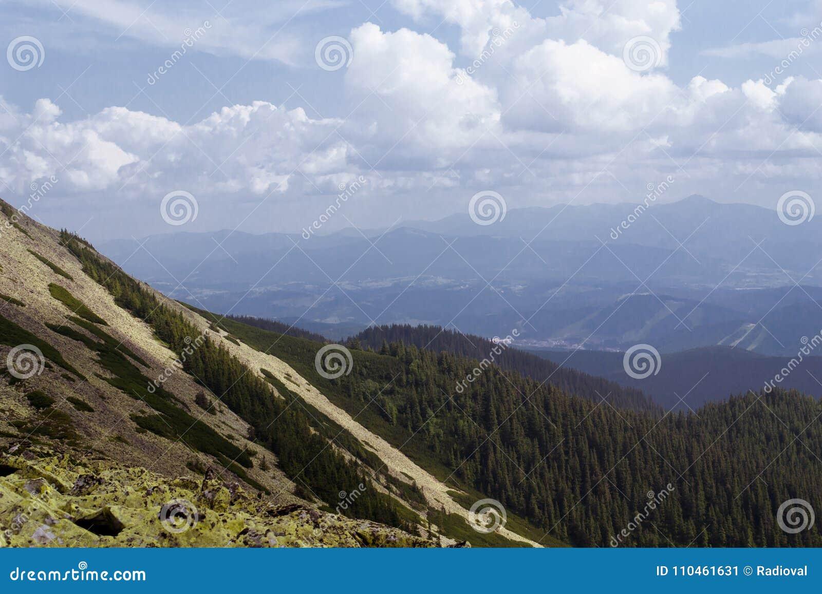 Trevlig sikt av bergen lopp Turism ukraine carpathians
