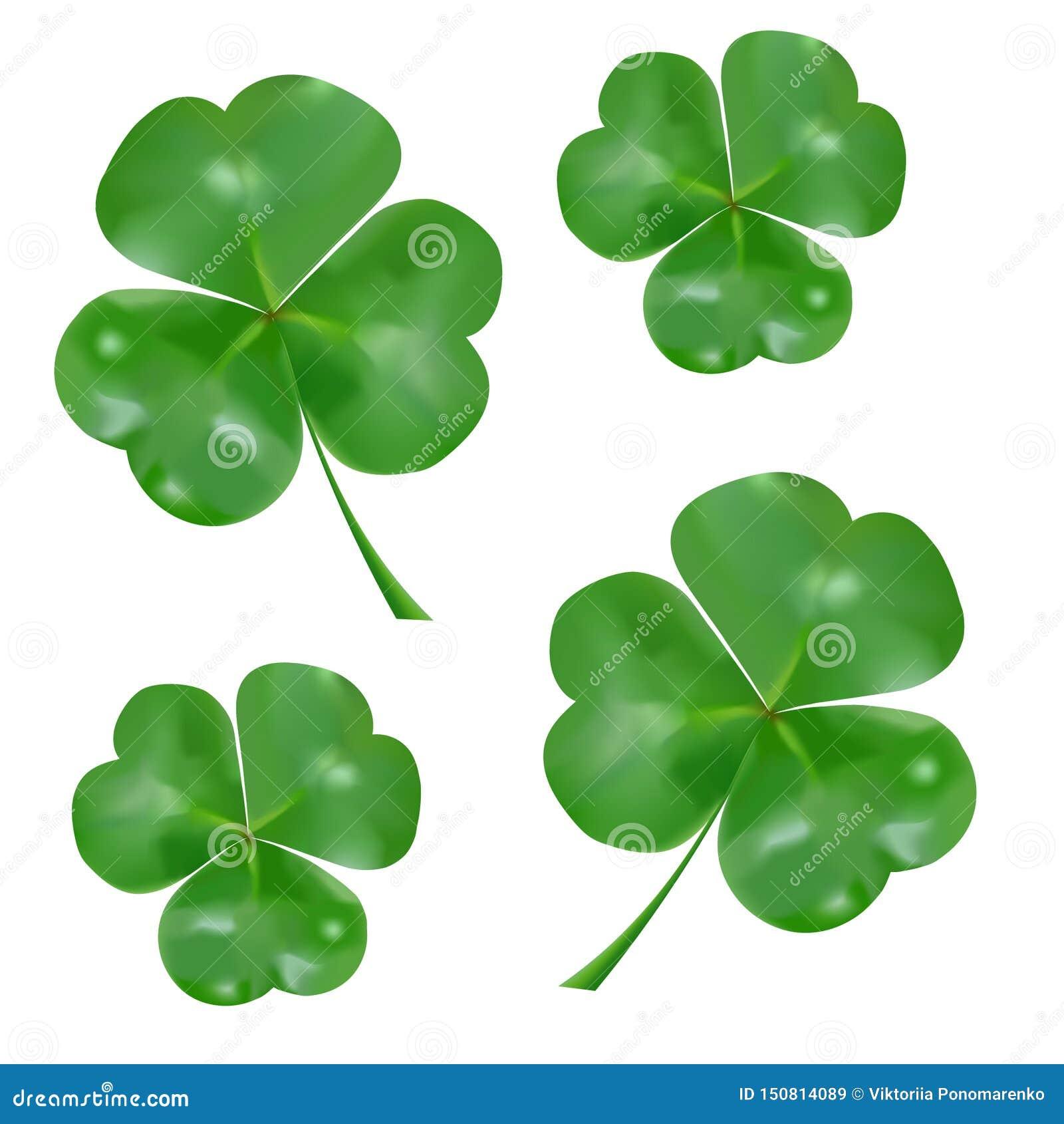Trevo três-com folhas realístico S?mbolo do dia do ` s de St Patrick