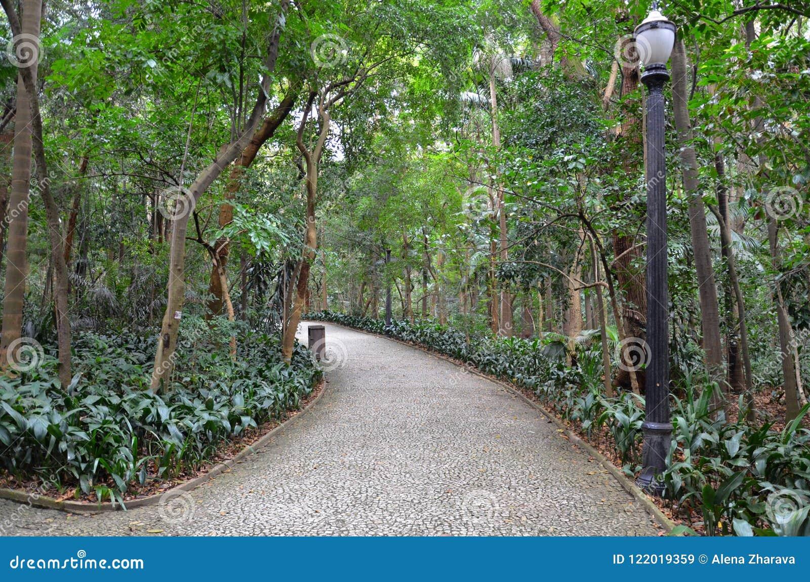 Trianon park na Paulista alei, Sao Paulo, Brazylia