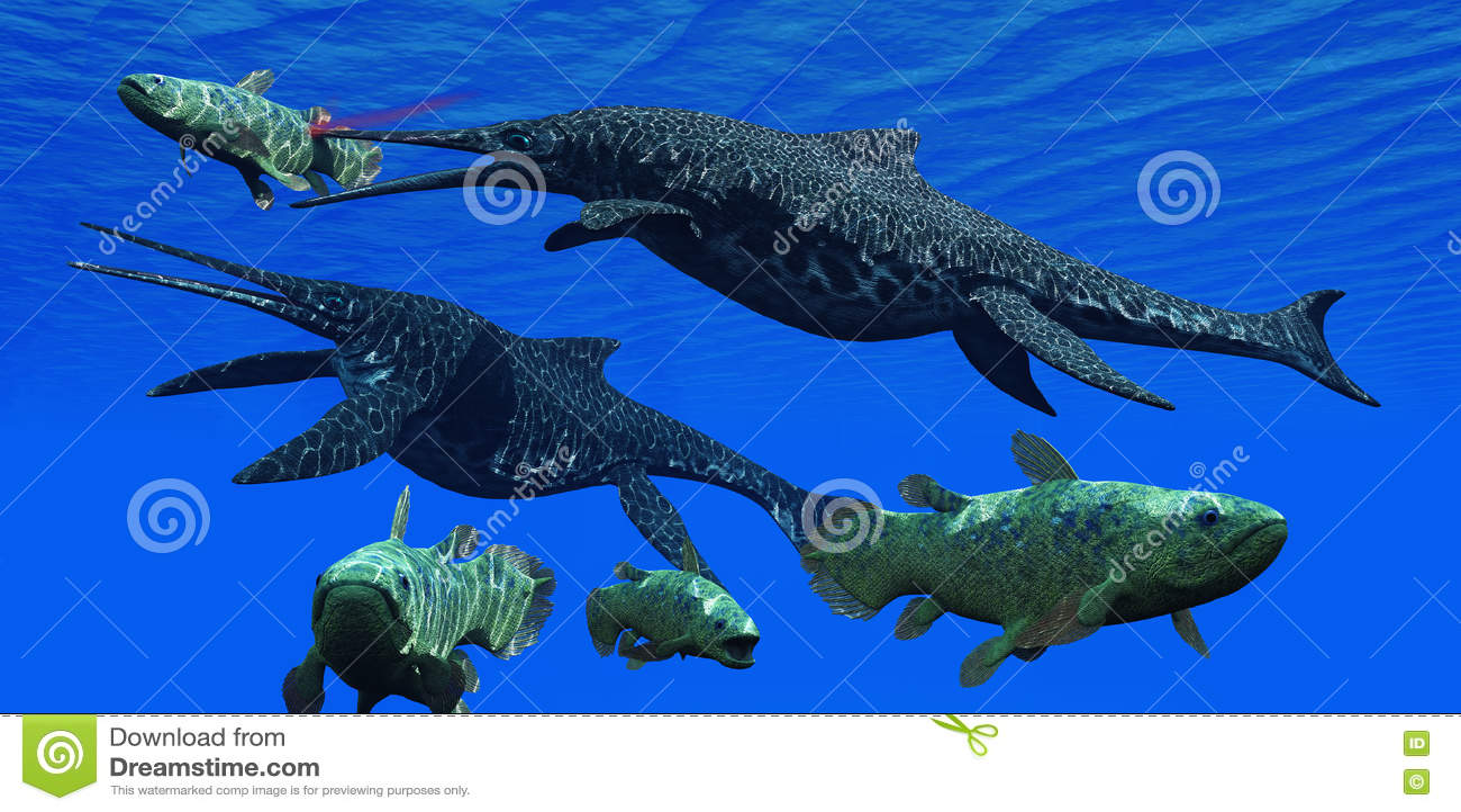 Triassic Shonisaurus Marine Reptile Stock Illustration - Image: 71155788