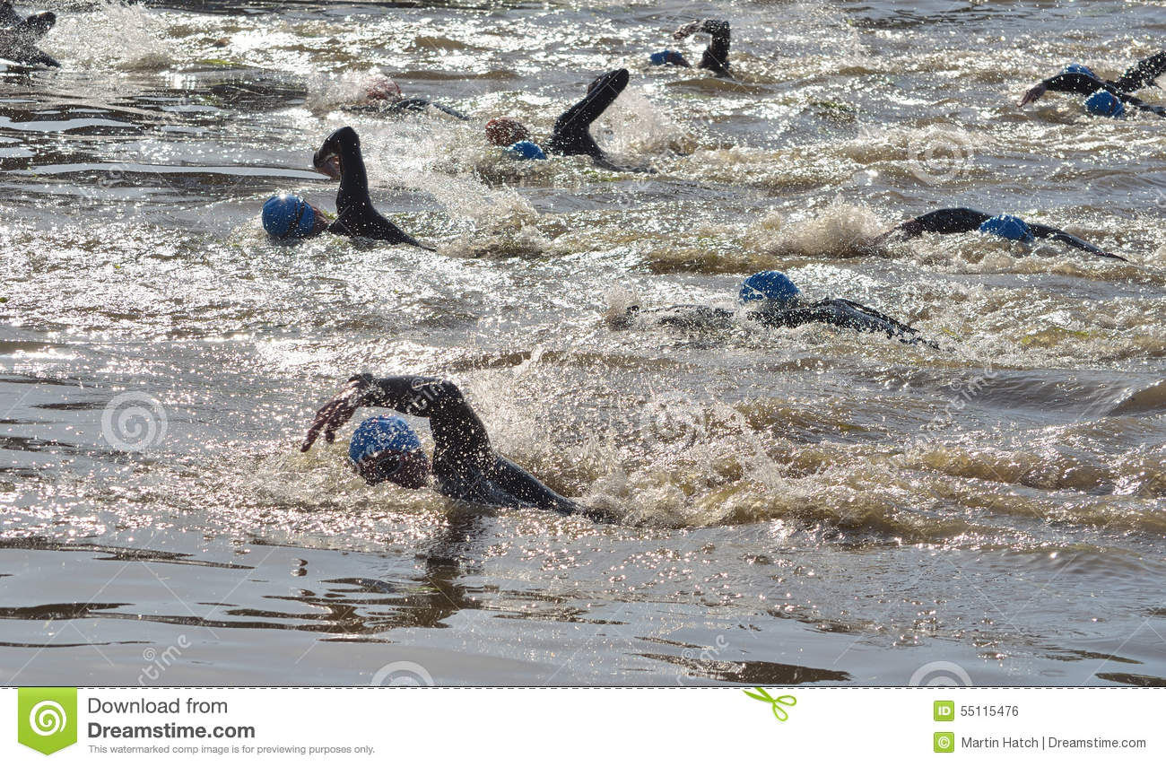 Triathlon Swimmers In The River Ouse Editorial Image 55115476