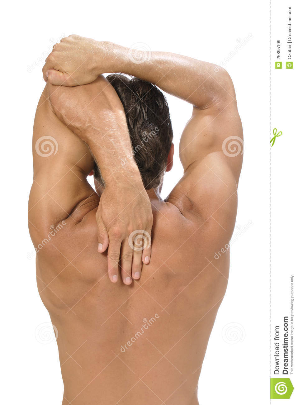 Rear view of muscular athletic man performing triceps stretch on white ...
