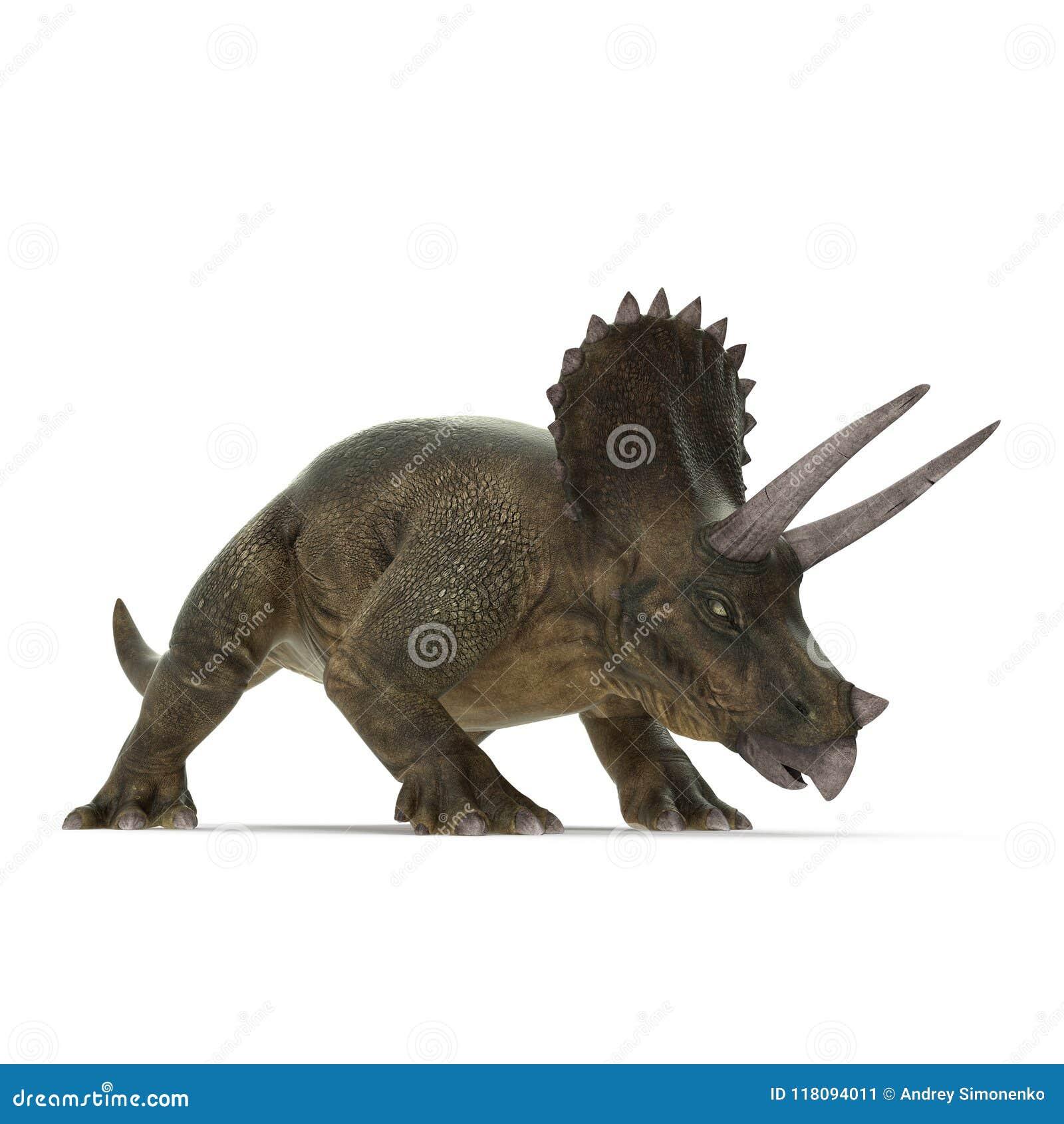 Triceratops dinosaur on white. 3D illustration