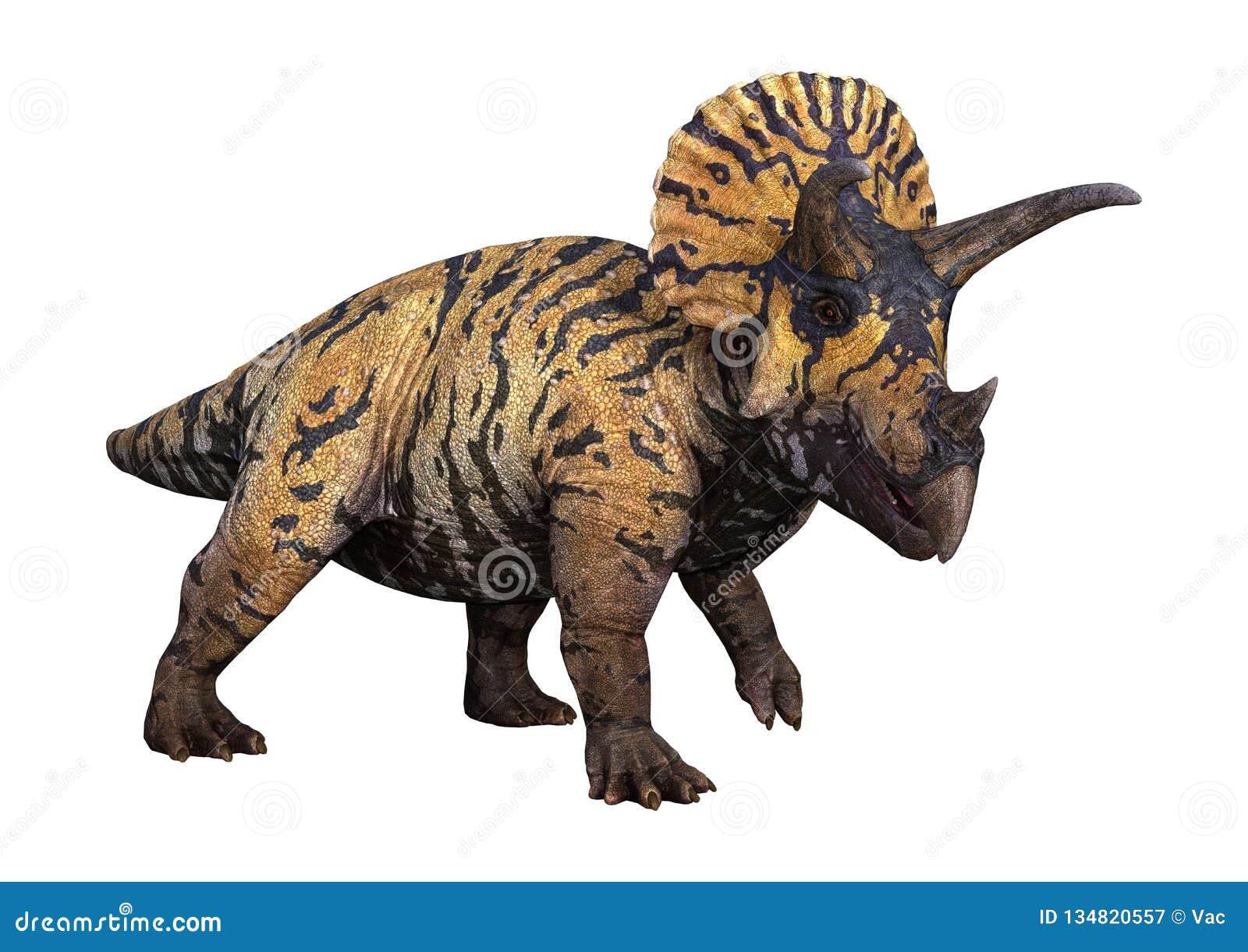 Triceratops do dinossauro da rendição 3D no branco