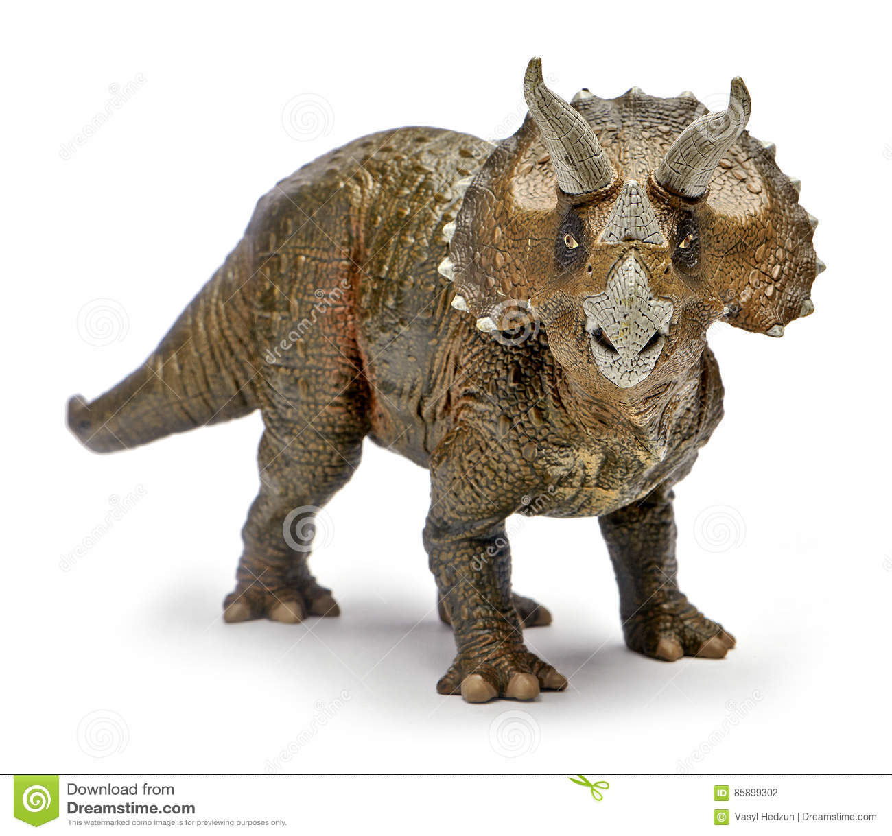 Ceratopsid Print from Greer Stothers in 2019 ...