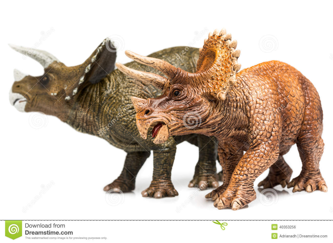 Triceratops Stock Photo Image 40353256